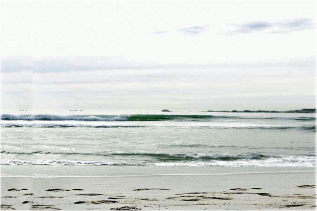 釣りのヒット率を劇的に上げる天秤の知識 in小豆島